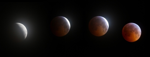 lunar ecplise photo sequence