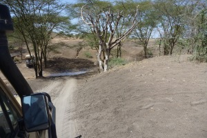 Rutted roads and river crossings was the theme of the drive
