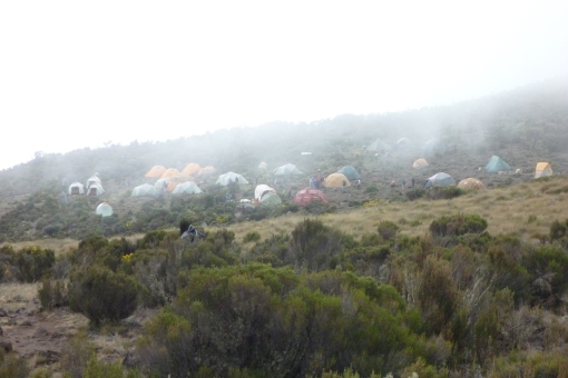 Kikilewa Camp shrouded in fog