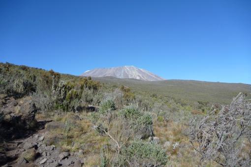 Kili Summit in the distance
