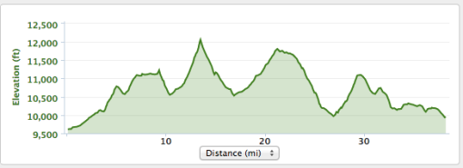Guyot Loop Elevation Profile. That red hot poker at mile is Guyot